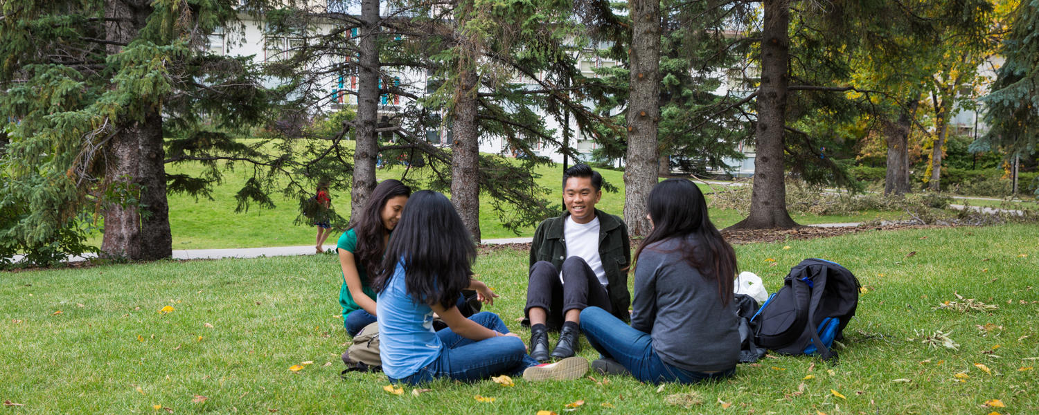 A group of students is seated on a lawn on a sunny day.