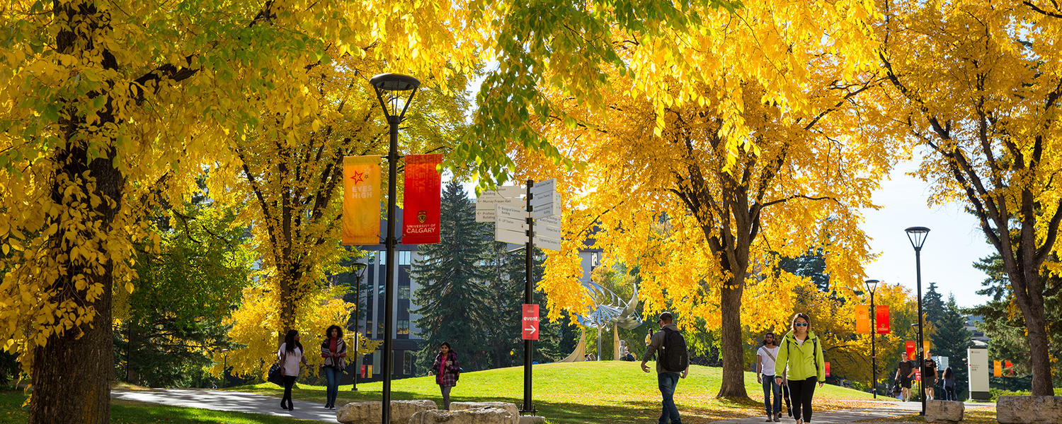 UCalgary in the Fall
