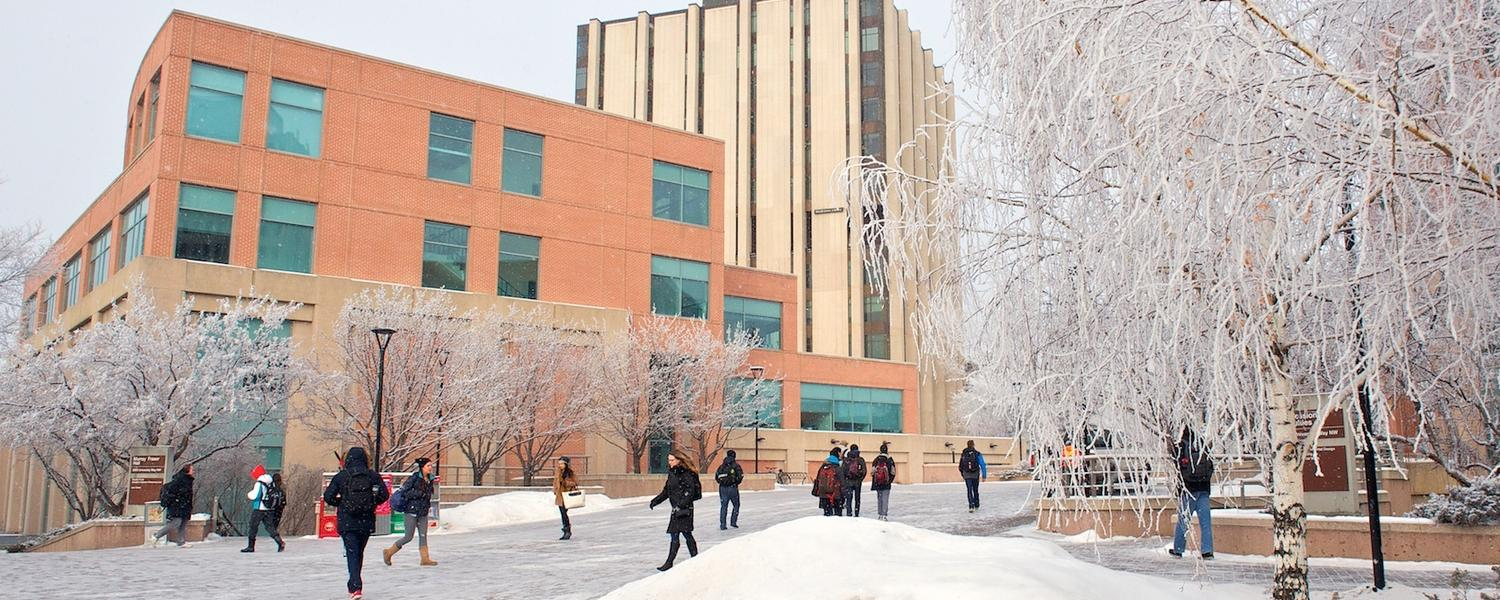 U of C Campus outside in winter