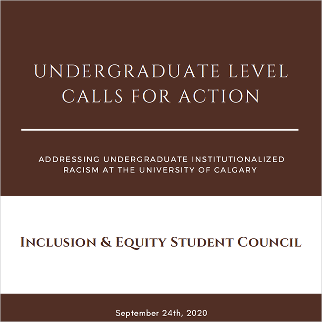 Inclusion & Equity Student Council Undergraduate Level Calls for Action