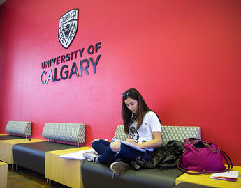 Student studying at UCalgary